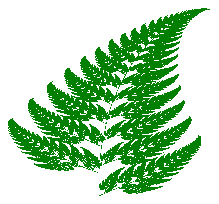 Fractal fern generated by computer