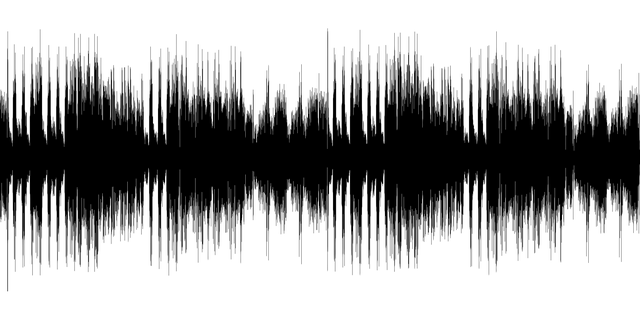 Image of an audio signal